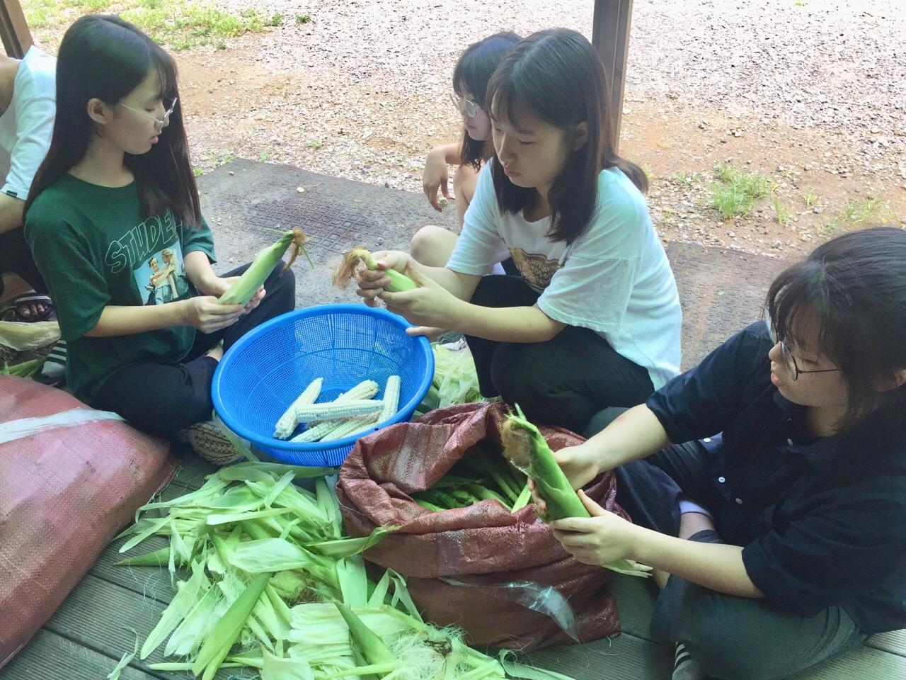 옥수수 껍질 까기
